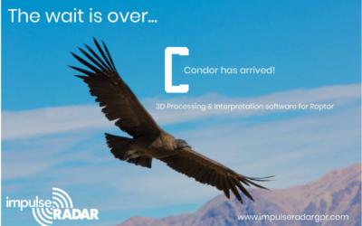 Condor on saabunud